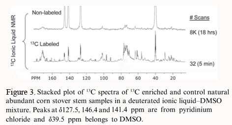 NMR 13C Maize