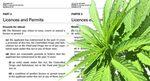 Cannabis licentie